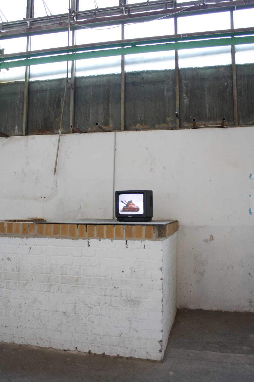 Ausstellungsansicht Mikropiraten 2010